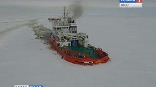 «Асимметричный» ледокол Балтика. Многоцелевое судно для  нефтегазового комплекса России