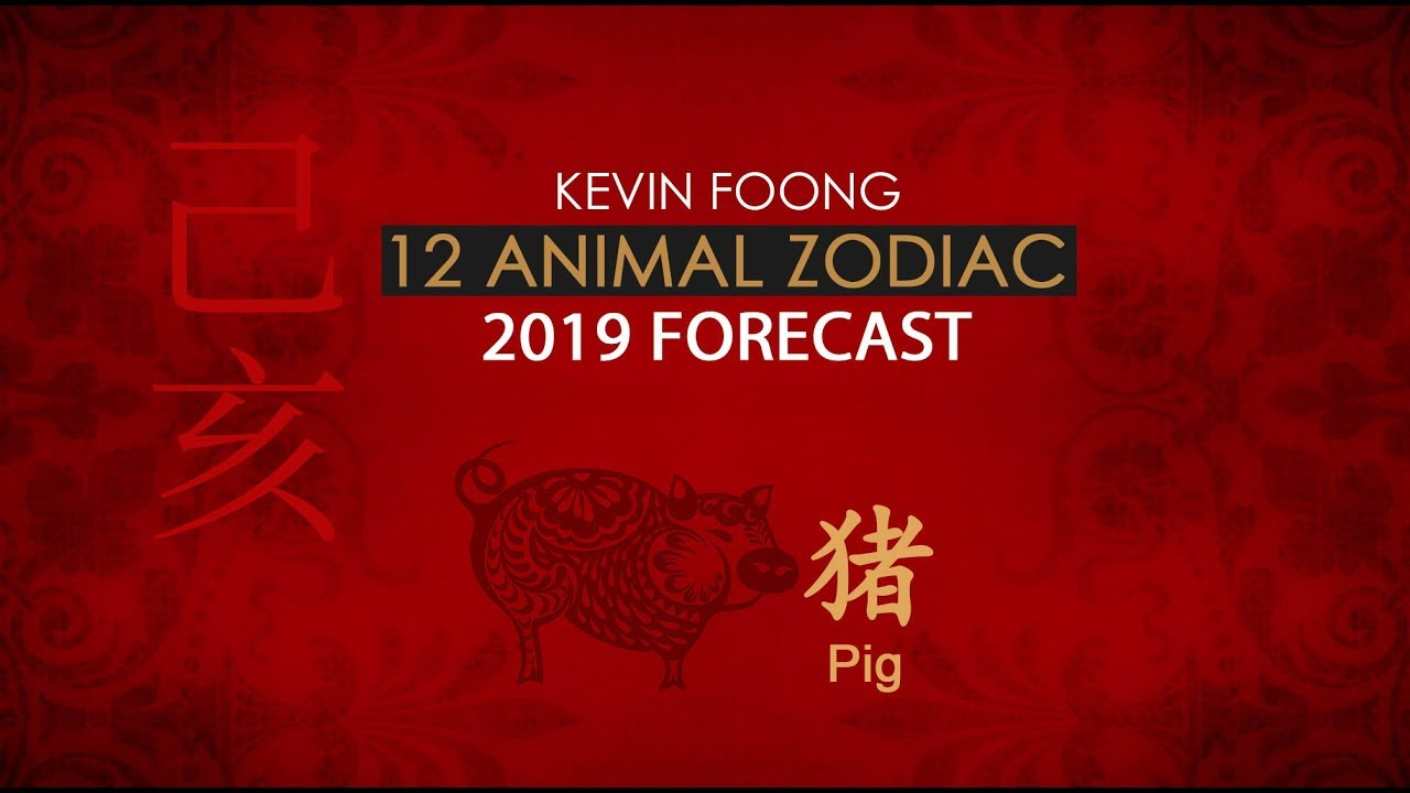 35b235f04 Here's your Chinese zodiac forecast for 2019 Year of the Pig ...