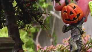 Miniature Garden Ideas for Halloween, DIY Craft Ideas for Decoration, Parties, Fairy Gardens and Railroad Gardens. Visit http://www.TwoGreenThumbs.com ...