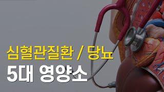 심혈관질환 (당뇨, 고지혈증) 5대 영양소
