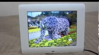 [제품리뷰] 카멜 디지털 액자 (PF-8020) 8인치…