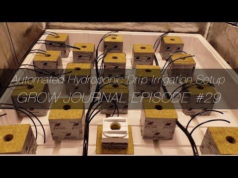 Automated Hydroponic Drip Irrigation Setup - Grow Journal E29