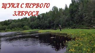 ЩУКА С ПЕРВОГО ЗАБРОСА Рыбалка на реке Щука окунь