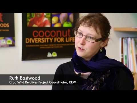 Crop Wild Relatives with Ruth Eastwood of Kew Garden's Millennium Seed Bank