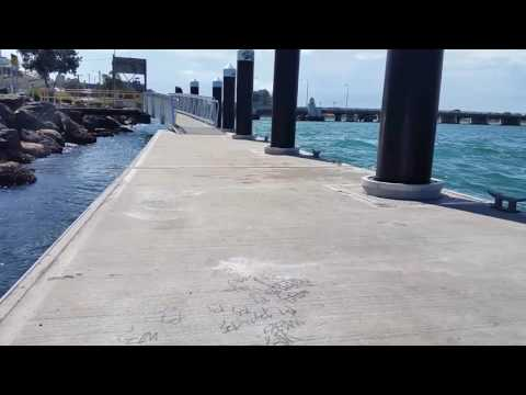 Swansea Jetty Floating Pontoon, NSW: Better then Luna Park or theme parks only FREE. 80m Nth Sydney.