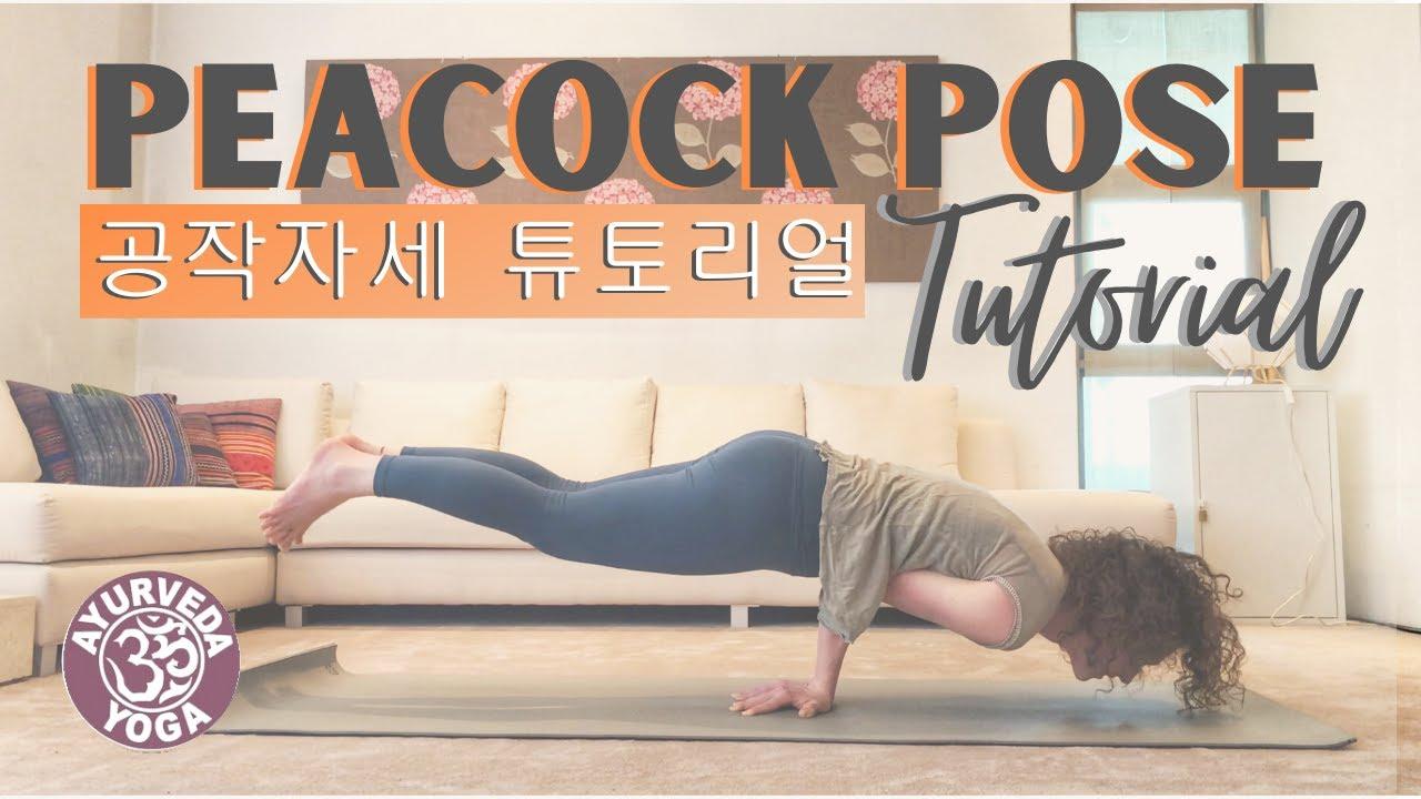 Peacock Pose Tutorial (Mayurasana step by step / 공작 자세 ...