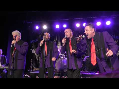 METROTONES Who's That Knocking? WILDEST CATS IN TOWN XMAS 2018