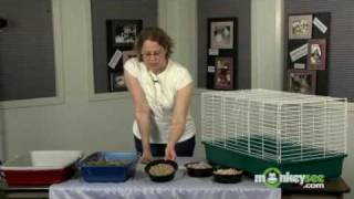 Rabbit Care - Proper Housing For Your Rabbit
