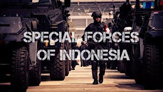 Download Pasukan Khusus Indonesia - Special Forces of Indonesia - Koopsusgab