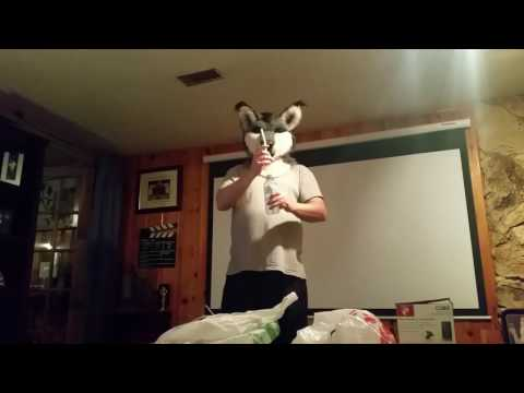 How you drink wearing a fursuit head