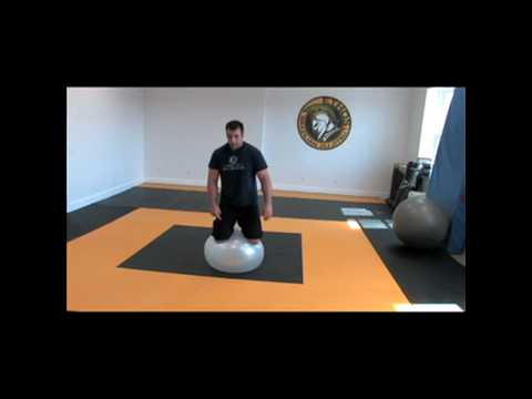 SWISS BALL TECHNIQUES FOR BRAZILIAN JIU-JITSU