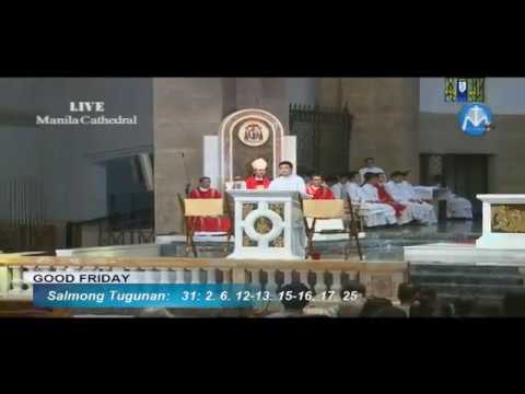 Luis Antonio Cardinal  Tagle  - Huling Pitong Wika 2017