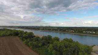 """""""Aus-Flug"""" am Rhein bei Meerbusch-Nierst..."""
