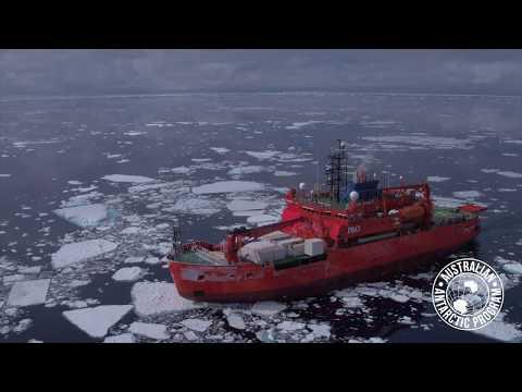 Australia's Antarctic Icebreaker The RSV Aurora Australis
