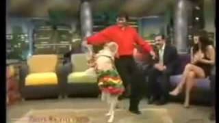 Dog dancing Salsa(better than you do)