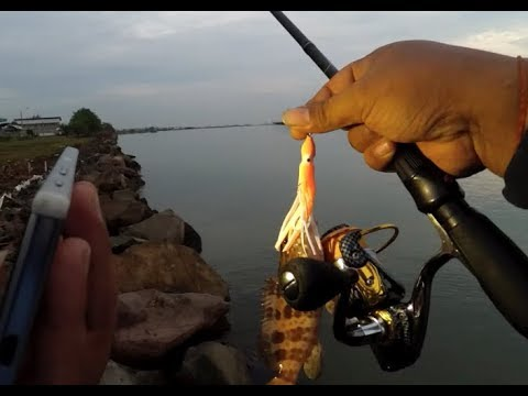 ULtralight Fishing: Octopus Squid Skirt Lure In Action