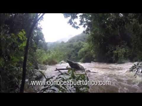 crecida del rio salientito en jayuya
