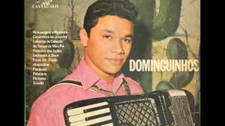 Alagoinhas - Dominguinhos - 1973 Lamento de Caboclo