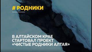 Алтайские географы хотят сосчитать все родники края