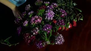 cắm hoa-  Cắm bát hoa Thanh Trúc để chúc mừng đội tuyển Việt Nam thắng Philippin