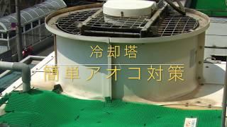 冷却塔 簡単 アオコ対策 thumbnail