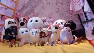 Тайная жизнь домашних животных. Игрушки из мультика Secret Life of Pets. Хлоя,Гиджет,Бадди,Макс,Мэл