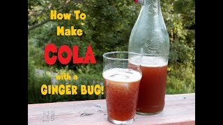 Make Your Own COLA With A GINGER BUG!