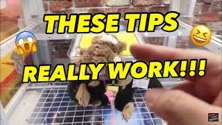 these-tips-really-work