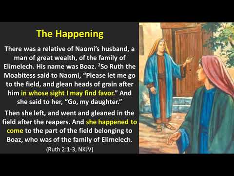 Ruth 2 - Under Yahweh's Wing