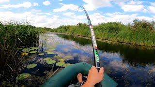Ловля щуки на удочку на живца Щука на поплавок летом