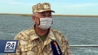 Временный запрет на ловлю рыбы введен на акватории Малого Аральского моря