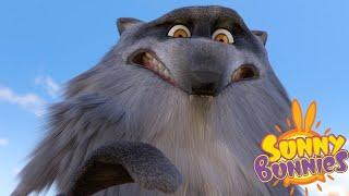 SUNNY BUNNIES | SONNIGE HÄSCHEN | SCARED WOLF | Lustige Cartoons für Kinder | WildBrain