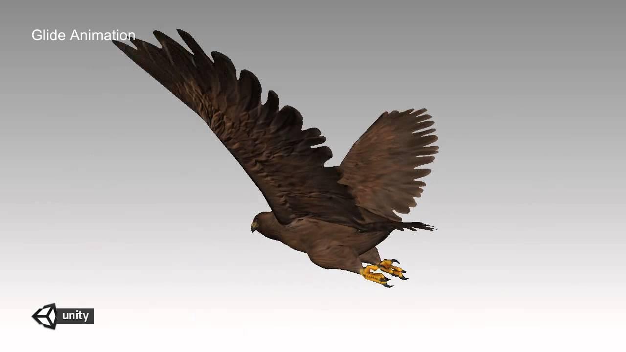 Eagle Animations Demo