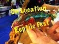 Reptile Fest 2017