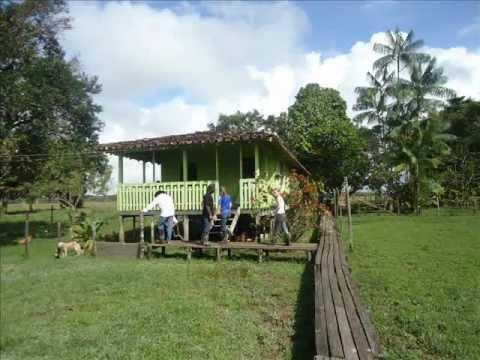 Tour pela Fazenda Caridade - Marajó