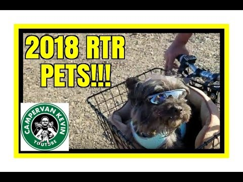 PETS OF THE 2018 RTR