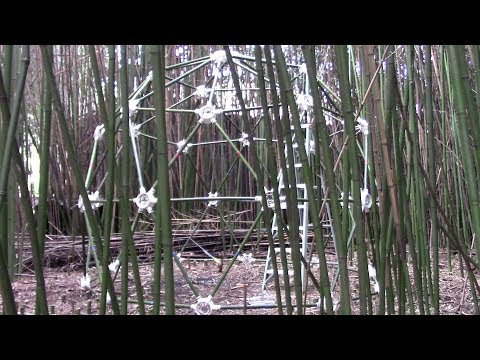 Bamboo Geodesic Dome - How to Build a Geodesic Dome with Bamboo