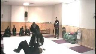 This is Ninjutsu, with resisting opponents, NO LARPING