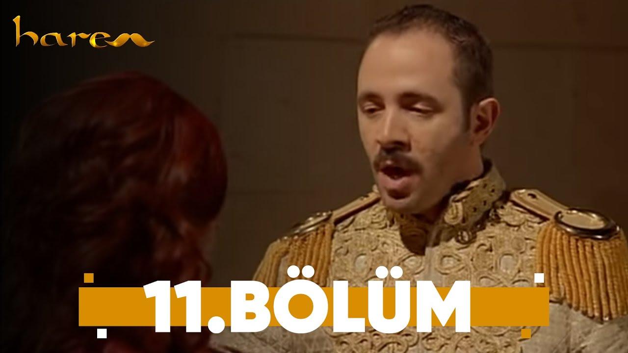 Harem - 11. Bölüm