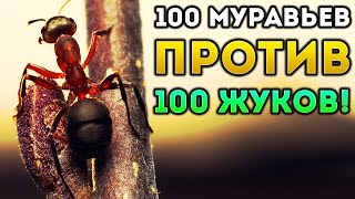 100 МУРАВЬЕВ ПРОТИВ 100 ЖУКОВ! - Empires of the Undergrowth