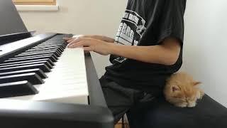 Ed Sheeran - Photograph, Piano Cover by Felix age 11