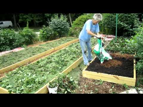 Raised Strawberry Beds Finished - Wisconsin Garden Video Blog 174.avi