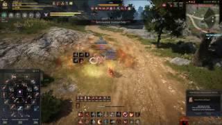 Black Desert - Kunoichis are alive! | Musa vs Kunoichi