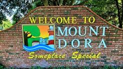 Mount Dora Fl Homes For Sale or Rent 2018