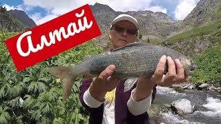 Лучшая Рыбалка в Горном Алтае летом Приглашаем Рыбаков Best Fishing in the Altai Mountains