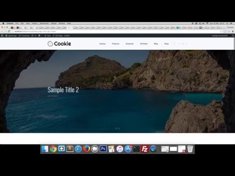 Cookie  Multipurpose Creative WordPress Theme - Tutorial 1 - Creating a Page with Agni Slider