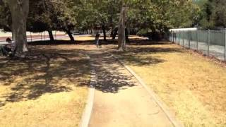 The Good Dog Minute 7/10/12: Geronimo Off-leash Trained In 7 Days!