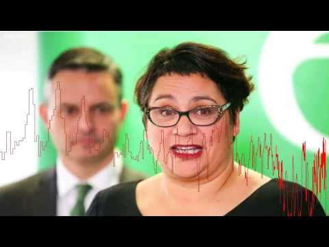 Metiria Turei resigns as Green co-leader
