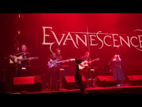 EvaneScence - A New Way To Bleed (live In Voronezh)