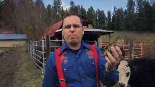 DevOps: No Horse Sh** - Original (language warning) - ChefConf 2014
